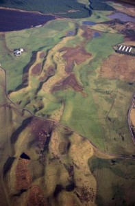 Carstairs Kames - a series of anastomosing ridges and mounds deposited by glacial meltwater rivers at the end of the last Ice Age. © Scottish Natural Heritage.